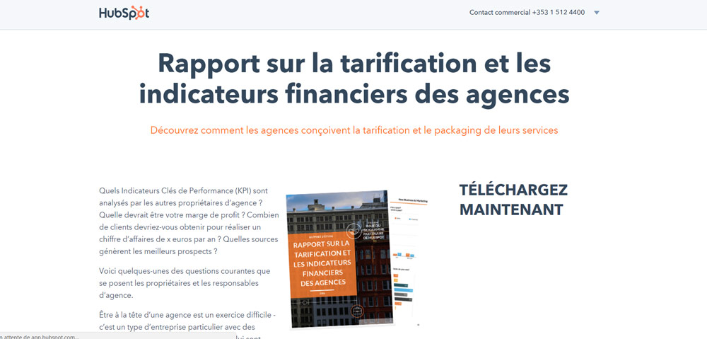 Exemple de lead magnet : rapport d'industries