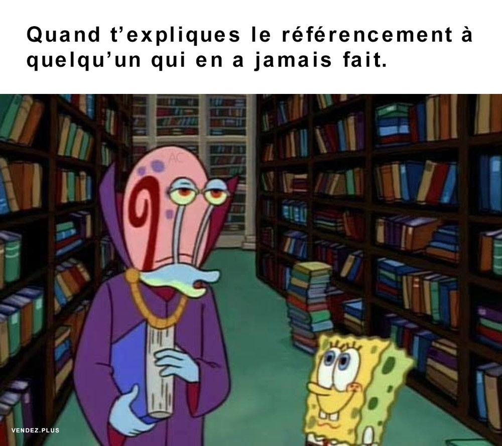 Meme référencement - SEO